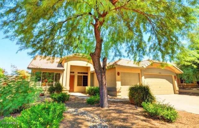 11241 S Hopi Street, Goodyear, AZ 85338 (MLS #5986782) :: Kortright Group - West USA Realty