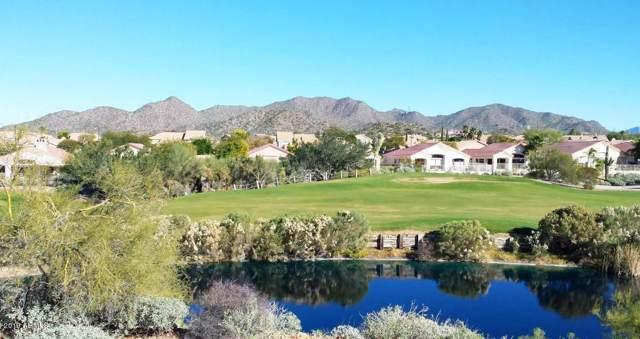 6446 E Trailridge Circle, Mesa, AZ 85215 (MLS #5986908) :: Openshaw Real Estate Group in partnership with The Jesse Herfel Real Estate Group