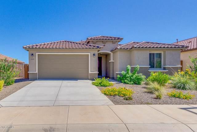21241 N 260th Lane, Buckeye, AZ 85396 (MLS #5987126) :: The Property Partners at eXp Realty
