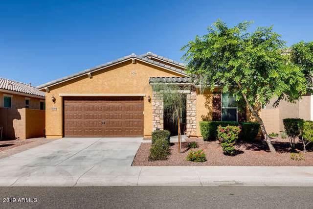 10388 W Rosewood Lane, Peoria, AZ 85383 (MLS #5987151) :: Howe Realty