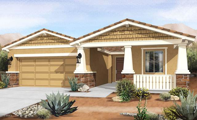 9742 E Tumeric Avenue, Mesa, AZ 85212 (MLS #5987259) :: Lucido Agency