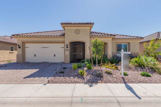 7807 W Autumn Vista Way, Florence, AZ 85132 (MLS #5987320) :: Conway Real Estate