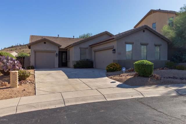6220 W Molly Drive, Phoenix, AZ 85083 (MLS #5987386) :: Devor Real Estate Associates