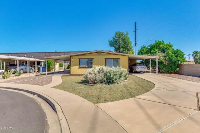 363 S Alvaro Circle, Mesa, AZ 85206 (MLS #5987440) :: My Home Group