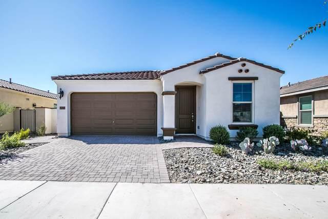 5240 S Cobalt, Mesa, AZ 85212 (MLS #5987506) :: Lucido Agency