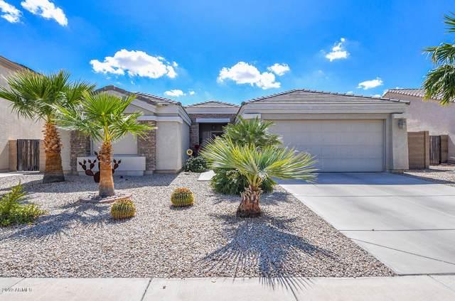 1287 W Castle Drive, Casa Grande, AZ 85122 (MLS #5987577) :: Occasio Realty