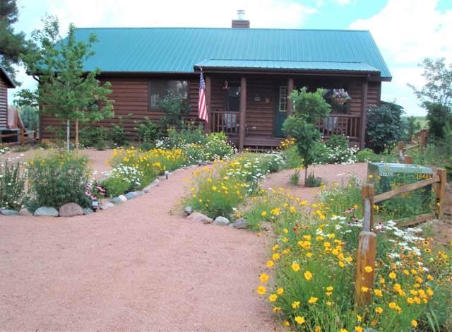 2668 Lodge Loop, Overgaard, AZ 85933 (MLS #5987626) :: Lux Home Group at  Keller Williams Realty Phoenix