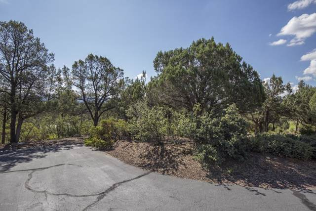 1206 N Indian Paintbrush Circle, Payson, AZ 85541 (MLS #5987730) :: The Kenny Klaus Team