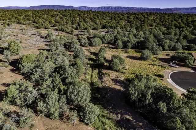 1306 N Earhart Parkway, Payson, AZ 85541 (MLS #5987784) :: Riddle Realty Group - Keller Williams Arizona Realty