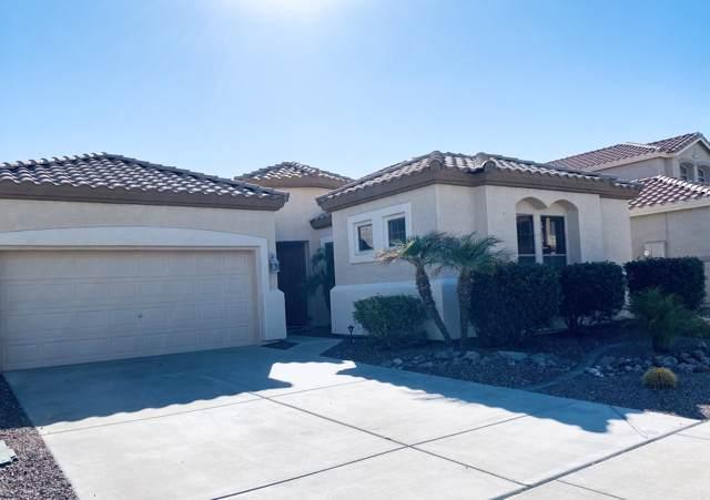 2743 W Silver Fox Way, Phoenix, AZ 85045 (MLS #5987976) :: Brett Tanner Home Selling Team