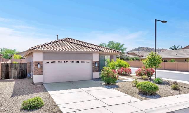 7049 W Lone Tree Trail, Peoria, AZ 85383 (MLS #5988126) :: Howe Realty