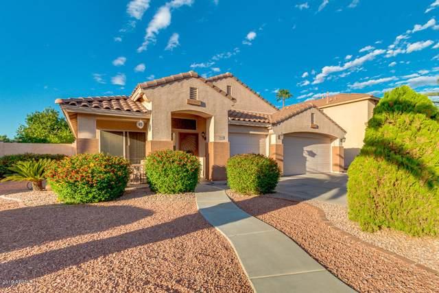 5646 E Grove Circle, Mesa, AZ 85206 (MLS #5988140) :: My Home Group