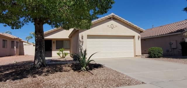 13844 W Lundberg Street, Surprise, AZ 85374 (MLS #5988155) :: Revelation Real Estate
