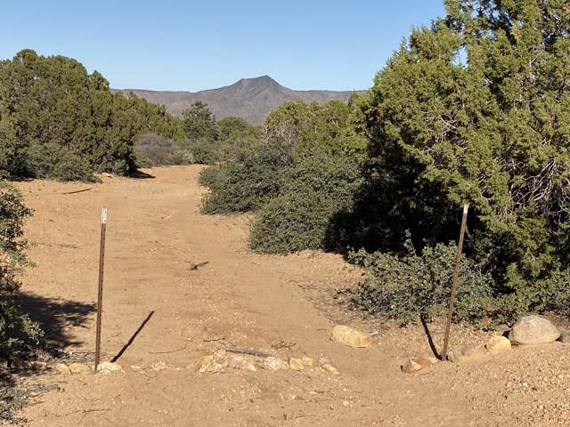 Lot 124 Mountain Spring Road, Hackberry, AZ 86411 (MLS #5988308) :: The Kenny Klaus Team