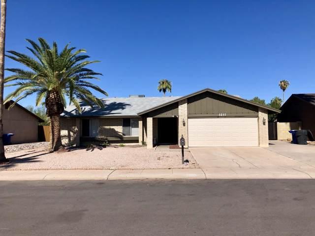 3217 N Margate Place, Chandler, AZ 85224 (MLS #5988349) :: Lifestyle Partners Team