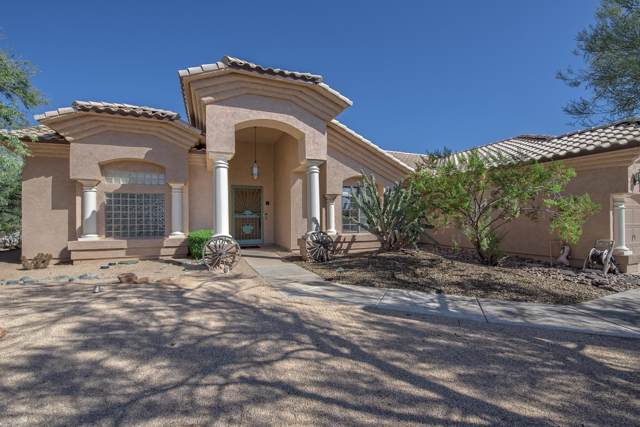 410 E Blue Eagle Lane, Phoenix, AZ 85086 (MLS #5988473) :: Conway Real Estate