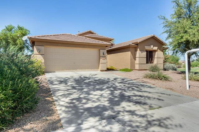 32898 N Cat Hills Avenue, Queen Creek, AZ 85142 (MLS #5988511) :: The Laughton Team