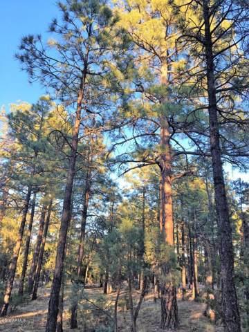 2941 Antelope Trail, Overgaard, AZ 85933 (MLS #5988536) :: Lux Home Group at  Keller Williams Realty Phoenix