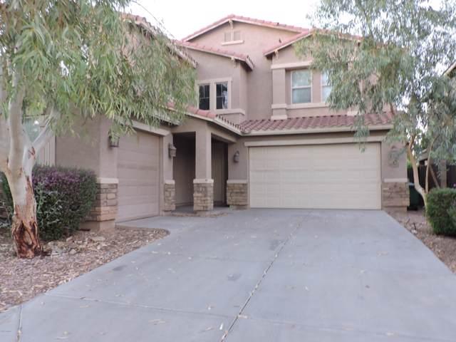 42462 W Avella Drive, Maricopa, AZ 85138 (MLS #5988579) :: Revelation Real Estate
