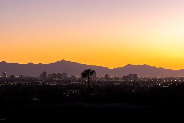 6664 N 29TH Place, Phoenix, AZ 85016 (MLS #5988582) :: Brett Tanner Home Selling Team