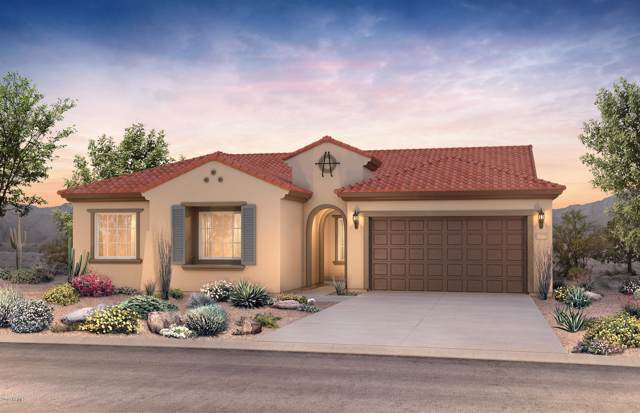 9678 W Patrick Lane, Peoria, AZ 85383 (MLS #5988601) :: The Kenny Klaus Team