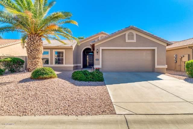 14961 W Verde Lane, Goodyear, AZ 85395 (MLS #5988682) :: Kortright Group - West USA Realty
