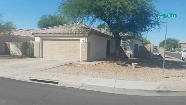 13549 W Desert Flower Drive, Goodyear, AZ 85395 (MLS #5988809) :: Kortright Group - West USA Realty