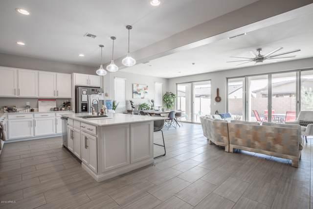 23085 E Desert Spoon Drive, Queen Creek, AZ 85142 (MLS #5988959) :: Revelation Real Estate