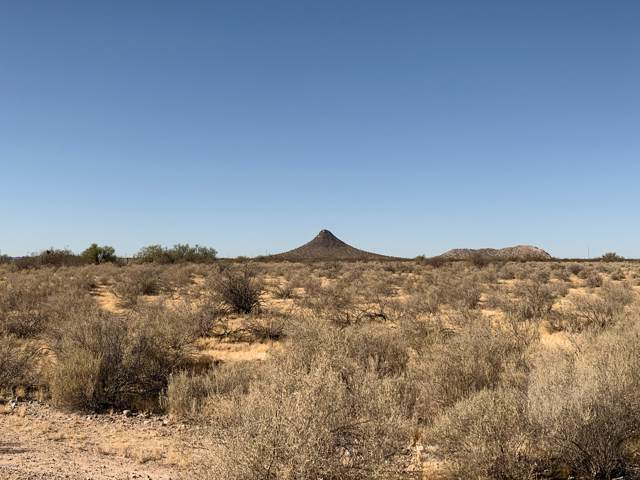 6175 E Pattee Road, Florence, AZ 85132 (MLS #5989010) :: Occasio Realty