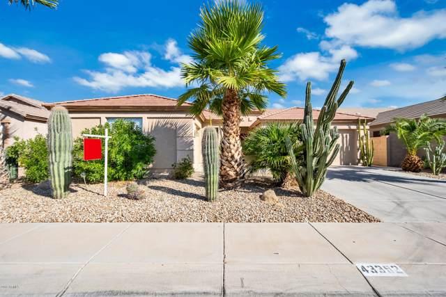 43392 W Neely Drive, Maricopa, AZ 85138 (MLS #5989180) :: Revelation Real Estate