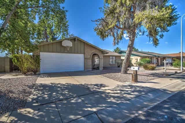 2671 W Bentrup Street, Chandler, AZ 85224 (MLS #5989386) :: Lifestyle Partners Team