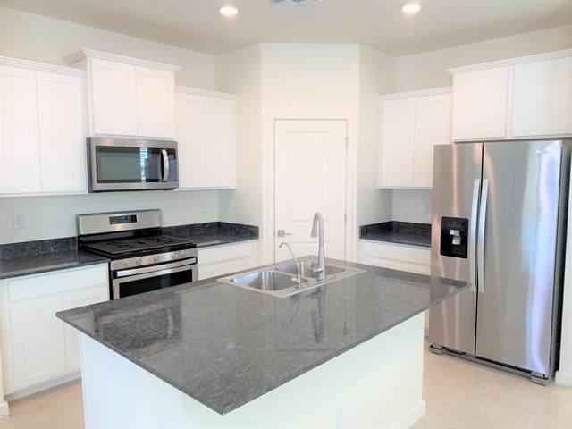 13172 N 144th Avenue, Surprise, AZ 85379 (MLS #5989668) :: Sheli Stoddart Team | West USA Realty