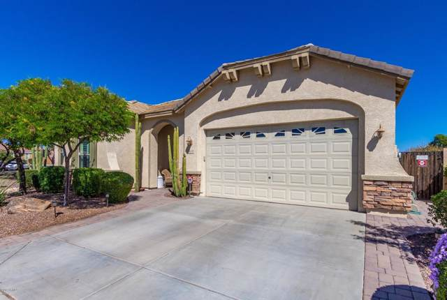 26135 N Desert Mesa Drive, Surprise, AZ 85387 (MLS #5989671) :: Nate Martinez Team