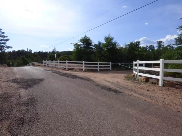 1608 E Cedar Lane, Payson, AZ 85541 (MLS #5989867) :: The Property Partners at eXp Realty