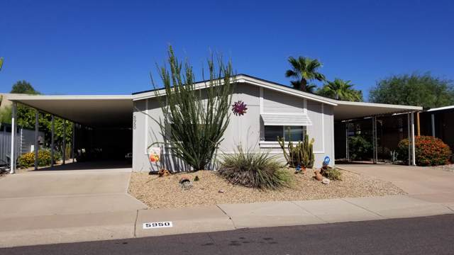 5950 E Player Place, Mesa, AZ 85215 (MLS #5989969) :: Openshaw Real Estate Group in partnership with The Jesse Herfel Real Estate Group