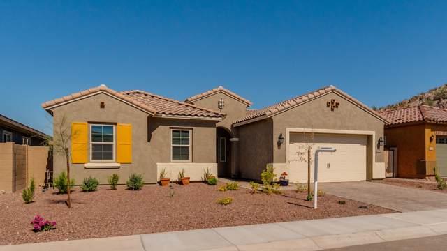10252 W Pinnacle Vista Drive, Peoria, AZ 85383 (MLS #5990112) :: Howe Realty