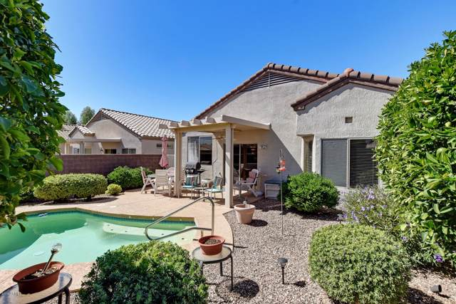 17923 N Bridle Lane, Surprise, AZ 85374 (MLS #5990309) :: Sheli Stoddart Team | West USA Realty