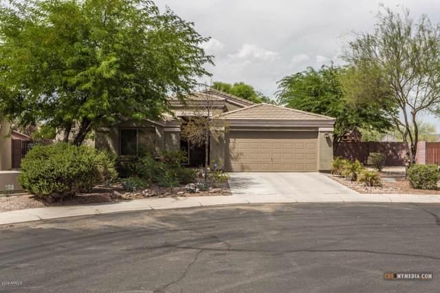 3943 N Creosote Court, Casa Grande, AZ 85122 (MLS #5990347) :: Yost Realty Group at RE/MAX Casa Grande