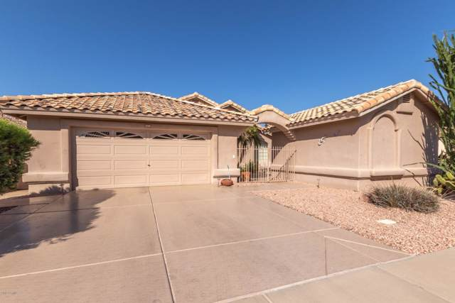 17656 N Raindance Road, Surprise, AZ 85374 (MLS #5990381) :: Sheli Stoddart Team | West USA Realty