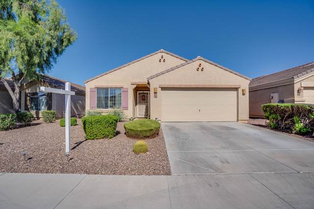 12024 W Dos Rios Drive, Sun City, AZ 85373 (MLS #5990418) :: Keller Williams Realty Phoenix