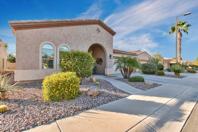 5360 S Marigold Way, Gilbert, AZ 85298 (MLS #5990444) :: The Kenny Klaus Team