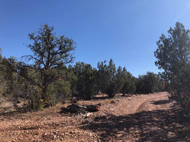 Lot 8B Sidwell Road, Seligman, AZ 86337 (MLS #5990587) :: The Bill and Cindy Flowers Team