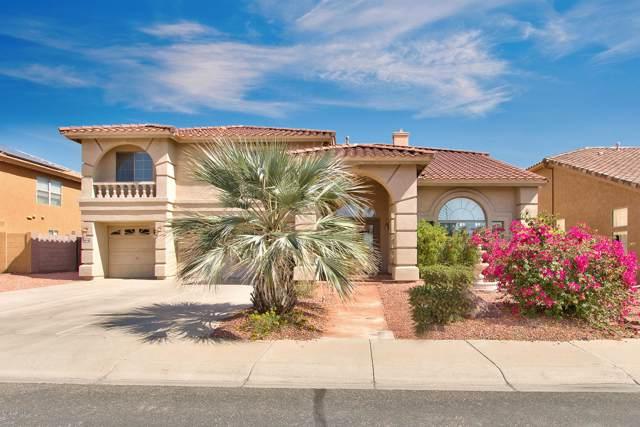 5905 N 133RD Avenue, Litchfield Park, AZ 85340 (MLS #5990603) :: Sheli Stoddart Team | West USA Realty