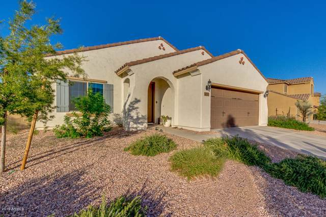 17504 W Hedgehog Place, Surprise, AZ 85387 (MLS #5990731) :: Devor Real Estate Associates