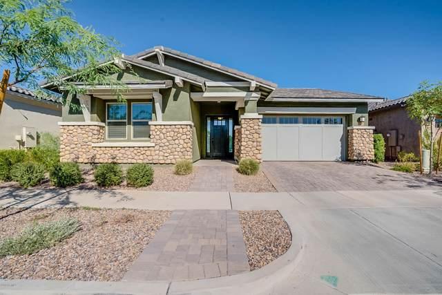 10056 E Cintron Drive, Mesa, AZ 85212 (MLS #5990807) :: Revelation Real Estate