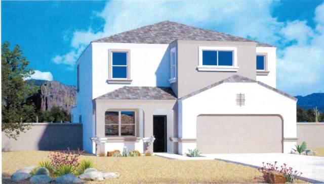 3690 N 310TH Lane, Buckeye, AZ 85396 (MLS #5990907) :: Santizo Realty Group