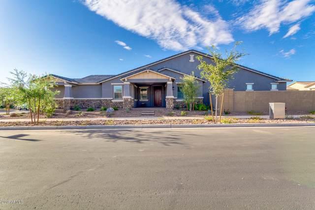 5657 S Colt, Mesa, AZ 85212 (MLS #5990933) :: Revelation Real Estate