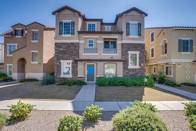1307 S Sabino Drive, Gilbert, AZ 85296 (MLS #5990955) :: Occasio Realty