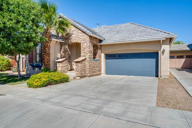 15128 W Windrose Drive, Surprise, AZ 85379 (MLS #5990985) :: The Ramsey Team