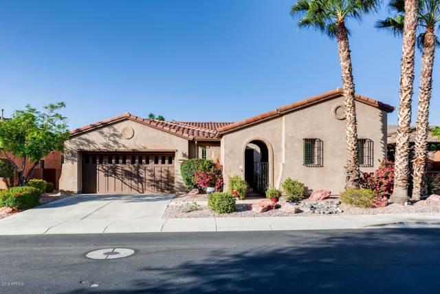 12726 W Jasmine Trail, Peoria, AZ 85383 (MLS #5991016) :: Occasio Realty